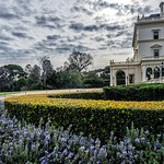 Michelle Golden - Government House