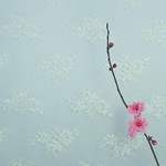 Jill Anderson - It flowers on her birthday