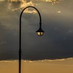Vira Vujovich - Lamp Post