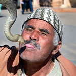 Ray Stabey - Snake Charmer, Fes Morocco