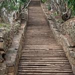 Jill Shaw - Temple stairway Mihintale