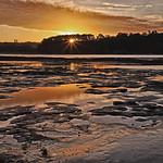 Helen Warnod - Dolphin Bay