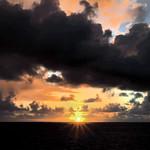 Michael Silverstein - Bright spot