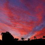 Fred Seeber - Emu Rocks Evening Sky