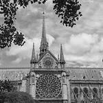 Helen Warnod - Notre Dame 2018