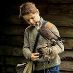 Daren Fawkes - Junior falconer