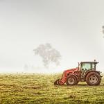 Vicki Moritz - Lonely tractor