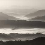 Steve Hilton - Morning Mist