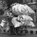 Jill Shaw - Pushing his cart