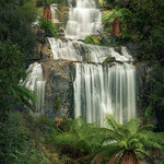 Trace O'Rourke - Fainter Falls