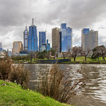 Elaine Whitton - The bank of the Yarra