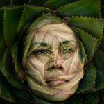 Geoff Shaw - Portrait in a cactus