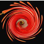 Jill Anderson - Firewheel Flower
