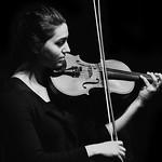 Daren Fawkes - The violinist