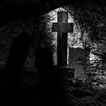 Jill Shaw - Graveyard