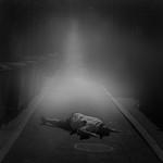 Geoff Shaw - Misty moonlit murder