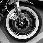 Donna Clarke - Motor bike wheel