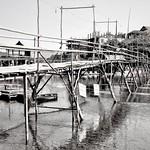Rod Turner - a bamboo bridge