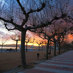 Peter Sureda - Palamos Sunset