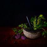 Marie Shaw - Culinary herbs