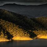 Angela McLeod - Golden Hills