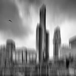 Vicki Moritz - Lost habitat3