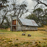 Ray Stabey - Wallaces Hut