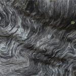 Tuck Leong - Snowgum Abstract No 5