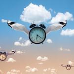 Sim Chong - Time Flies