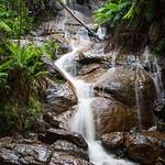 Elaine Whitton - LaLa Falls