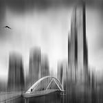 Vicki Moritz - Lost habitat2