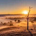 Vicki Moritz - Warm sunrise Acheron