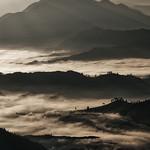 Steve Hilton - Morning Mist 2