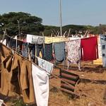 Rod Turner - washing21