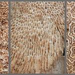 Tim Keane - Organic Masonry