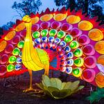 Hans Huysmans - Chinese Light Festival