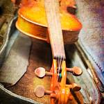 Jen Fawkes - The Violin