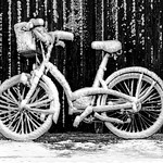 Jill Shaw - Snow laden bicycle