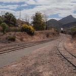 Lyndel Holt - Meeting the train