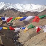 Jill Shaw - Prayer flags in the Himalayas