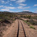 Lyndel Holt - By train