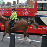 Donna Clarke - Mounted police on patrol