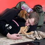 Lisa Li - Homeless Man and His Dog