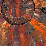 Tim Keane - Elements - Fire & Earth