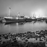 Anne Ramus - Strahan Harbour Fog (Tasmania)