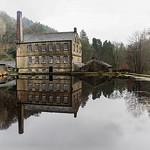 Jill Shaw - Old Mill