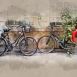 Vicki Moritz - Paris family bikes